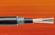 Câbles à fibres optiques